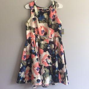 Danny & Nicole Size 14 WaterColor Aline Dress
